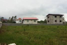 فروش زمین 1000 متری در شهرک نارنجستان